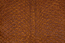 Arapaima Skin Vintage Chestnut