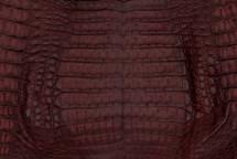 Caiman Skin Belly Matte Burgundy - XS