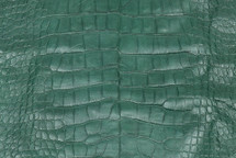 Alligator Skin Belly Matte Forest - XL