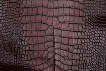 Alligator Skin Belly Vintage Burgundy - XL