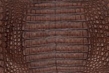 Caiman Skin Belly Vintage Saddle
