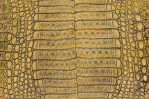 Caiman Skin Belly Vintage Yellow