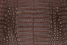 Caiman Skin Belly Vintage Kango