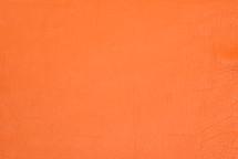 American Bison Skin Orange