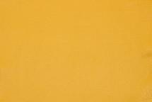American Bison Skin Yellow