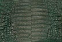 Caiman Skin Belly Vintage Forest