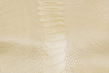 Ostrich Leg Glazed Ivory