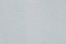 Ostrich Leg Crust
