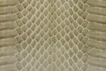 Whipsnake Skin Glazed Khaki