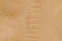Ostrich Leg Glazed Wheat