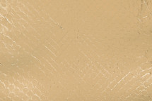 Anaconda Skin Metallic Gold