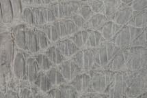 Crocodile Flank Skin Matte Cement