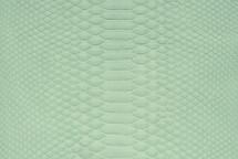 Python Skin Matte Mint