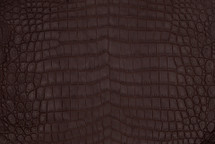 Nile Crocodile Skin Belly Matte Chocolate
