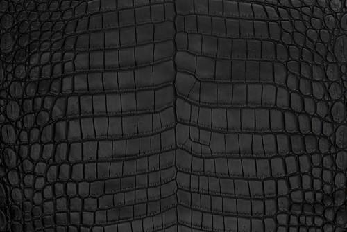 Nile Crocodile Skin Belly Matte Black