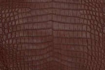 Nile Crocodile Skin Belly Matte Cognac