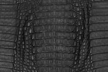 Caiman Skin Hornback Matte Black