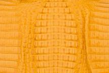Caiman Skin Hornback Matte Buttercup