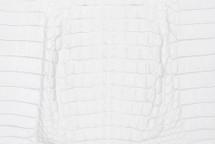 Caiman Skin Hornback Matte White