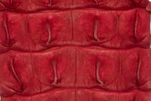 Crocodile Backstrap Red