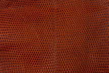 Lizard Skin Glazed Burnt Orange