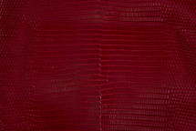 Lizard Skin Glazed Ruby