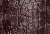 Crocodile Flank Skin Glazed Burgundy