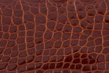 Alligator Flank Skin Glazed Gold