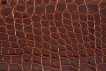 Alligator Flank Skin Glazed Chestnut