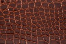 Alligator Flank Skin Glazed Chestnut