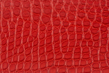 Alligator Flank Skin Matte Red