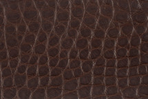 Alligator Flank Skin Matte Brown