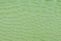 Alligator Flank Skin Matte Water Green
