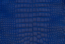 Alligator Skin Belly Matte Cobalt 30/34 cm Grade 4