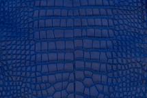 Alligator Skin Belly Matte Cobalt 30/34 cm Grade 4