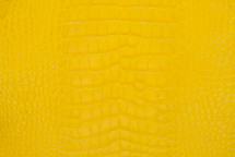 Alligator Skin Belly Matte Yellow 25/29 cm Grade 4