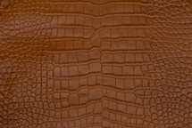 Alligator Skin Belly Matte Tan