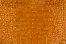 Alligator Skin Belly Glazed Saffron - 23/27 cm