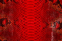 Python Skin Diamond Back Cut Unbleached Glazed Red