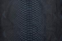 Python Skin Back Cut Unbleached Matte Navy - Short