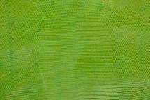 Lizard Skin Matte Lime