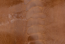 Ostrich Leg Matte Burnt Amber