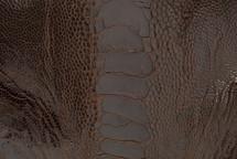 Ostrich Leg Matte Cigar