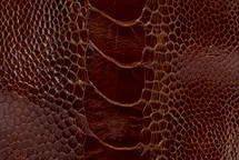 Ostrich Leg Matte Cognac