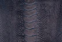 Ostrich Leg Matte Midnight
