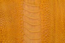 Ostrich Leg Matte Mustard