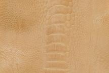 Ostrich Leg Matte Wheat