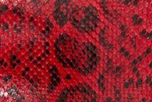 Anaconda Skin Glazed Red