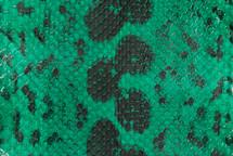 Anaconda Skin Matte Emerald