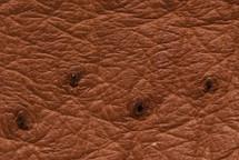 Ostrich Skin Matte Almond